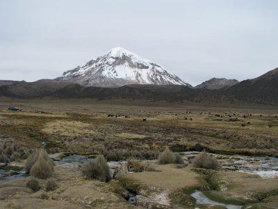 volcan-sajama-parinacota-15