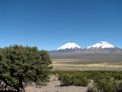volcan-sajama-parinacota-16